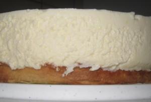 Käse Sahne Kuchen mit Mandarinen 05