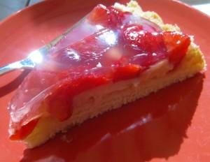 Erdbeer-Vanillepudding-Kuchen 005