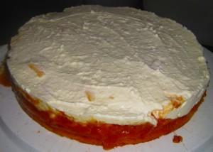 Tropen Kuchen 04